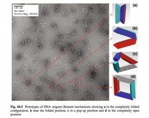 DNA origami mechanisms, Advances in Reconfigurable Mechanisms and Robots, Springer 2012